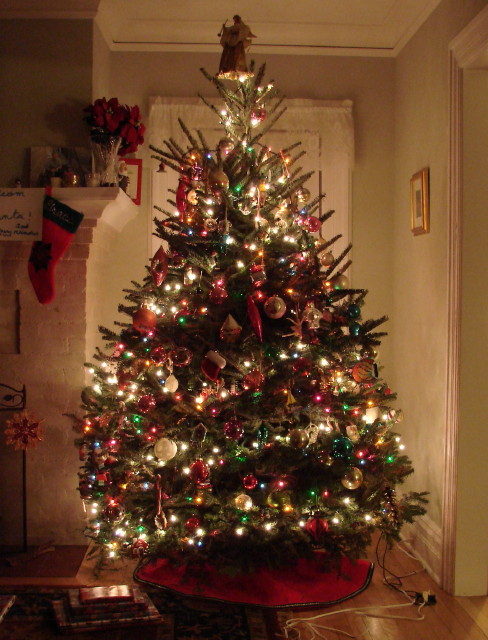 christmas tree - Christmas Vacation Tree